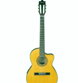 Ibáñez GA5TCE-AM