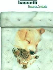 Bassetti dulce sueño