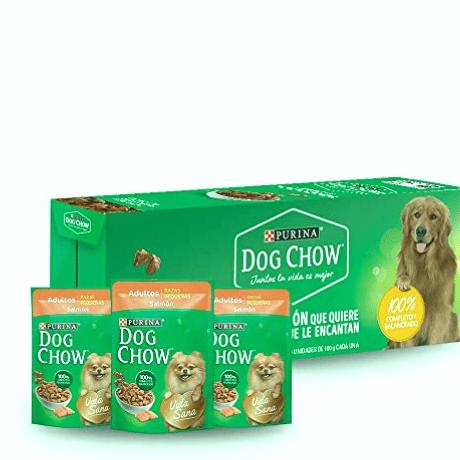 Los 5 mejores alimentos húmedos para perros